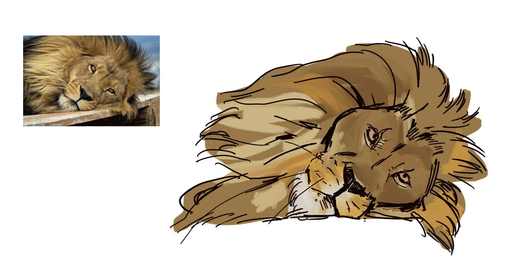 Les croquis de Lama BG - Page 2 Lion2_by_lamanon-dcdzjwa