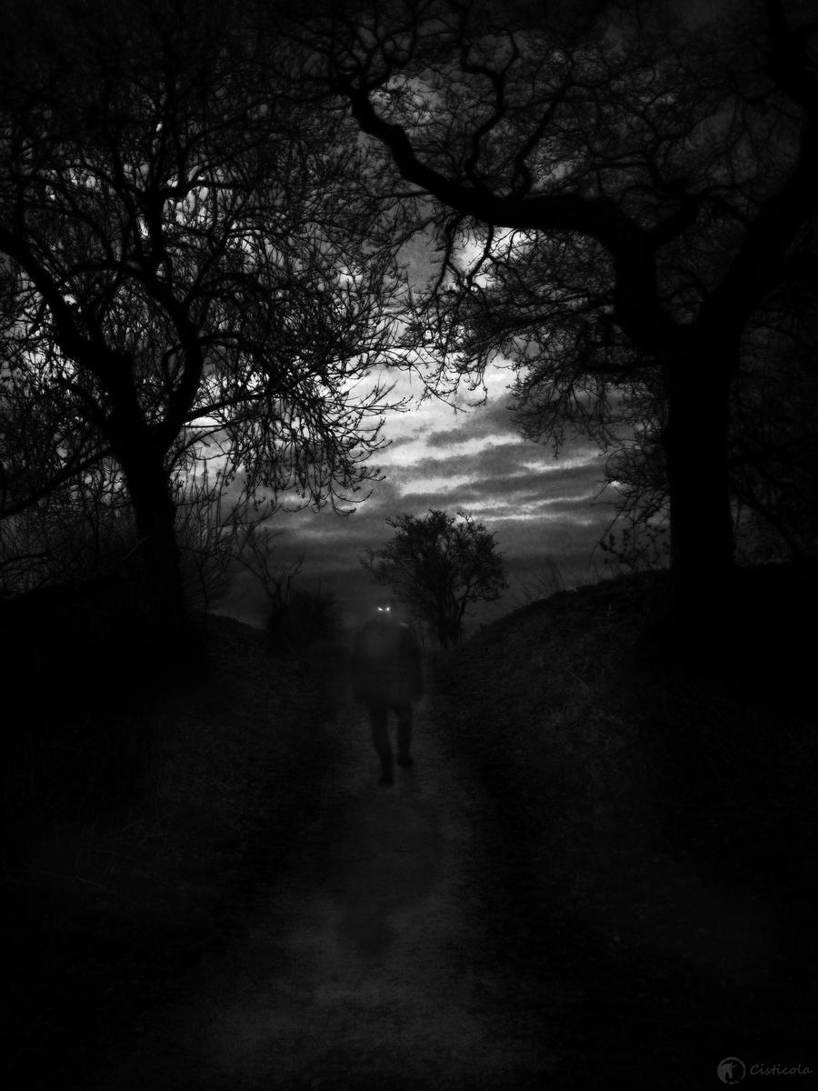 Dark Walker by Cisticola