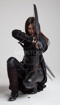 Liepa Medieval Assassin 188 - Stock Photography