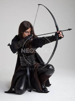 Liepa Medieval Assassin 179 - Stock Photography