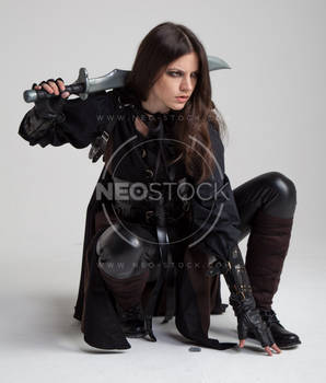 Liepa Medieval Assassin 174 - Stock Photography