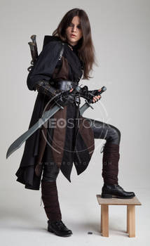 Liepa Medieval Assassin 151 - Stock Photography