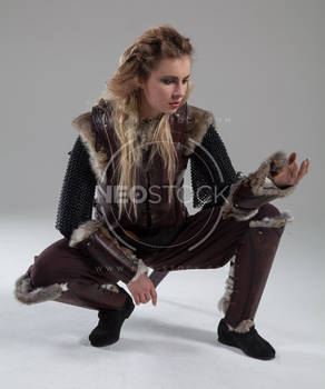 Pippa Medieval Warrior 252 - Stock Photography