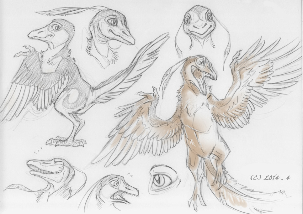 Archaeopteryx by FeysCat on DeviantArt