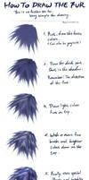 Tutorial : Animal Fur