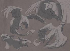 Sketch : Griffin