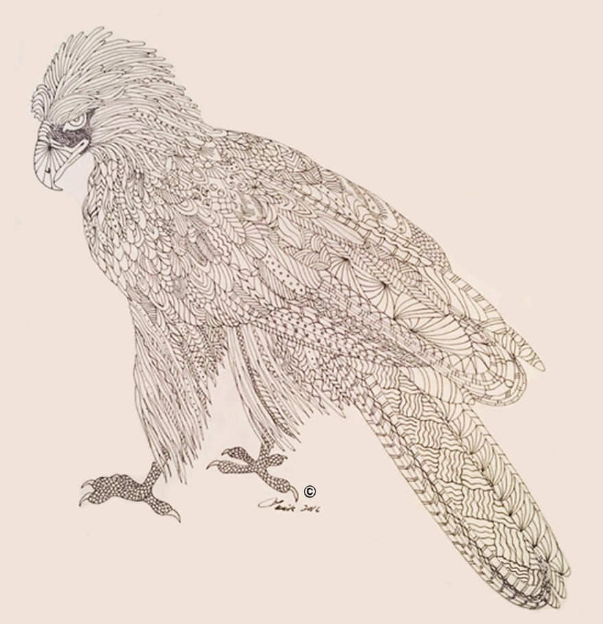 Eagle- Endangered Species Coloring Book Page by ArtOfElysee