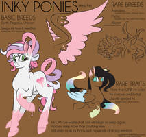 Inky Pony Reference Sheet by LillianInk