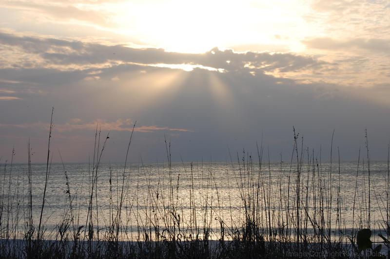 Sunset Barefoot Beach by Focus-Fire