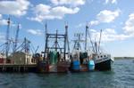 Fishermans Livelyhood