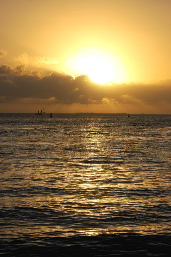 Golden Sunset by Focus-Fire