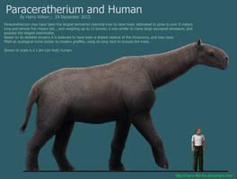 Paraceratherium by Harry-the-Fox