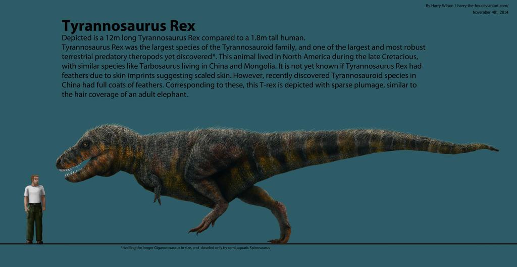 Tyrannosaurus Scale by Harry-the-Fox