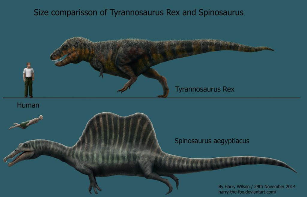 Spinosaurus and T-Rex Size Comparison by Harry-the-Fox on ...