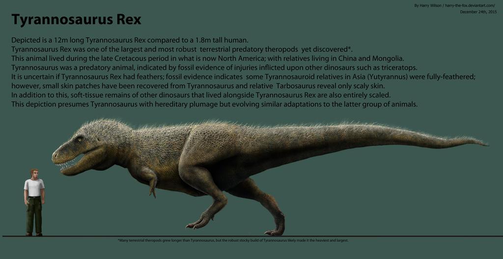 Tyrannosaurus Rex Scale- HYPER Enhanced by Harry-the-Fox