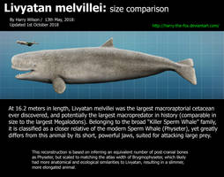 Livyatan Melvillei Size by Harry-the-Fox