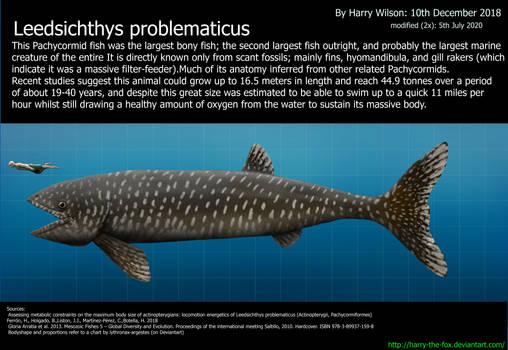 Leedsichthys problematicus size