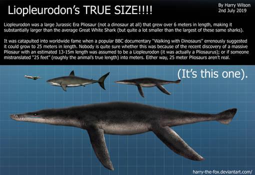 TRUE Liopleurodon Size