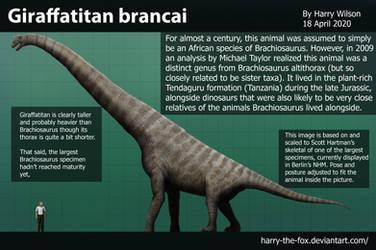 Giraffatitan brancai size