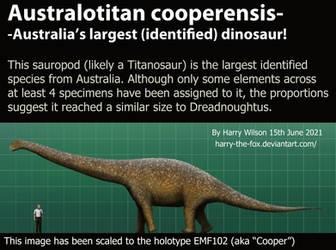 Australotitan Size