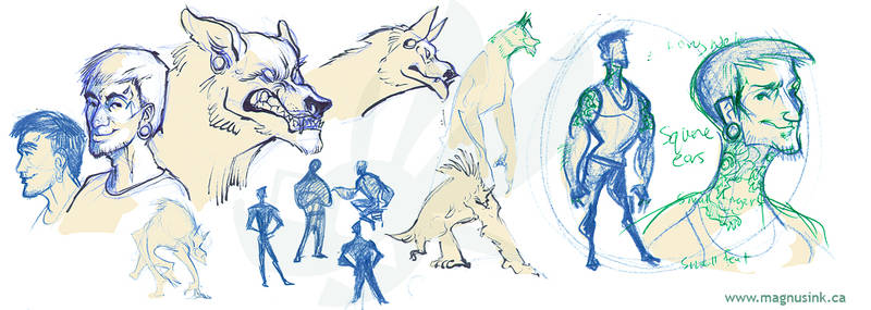 Moontouched - Badger Sketches by weremagnus