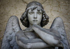 Angel II by rhipster