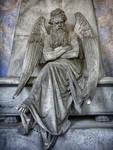 Angel IV