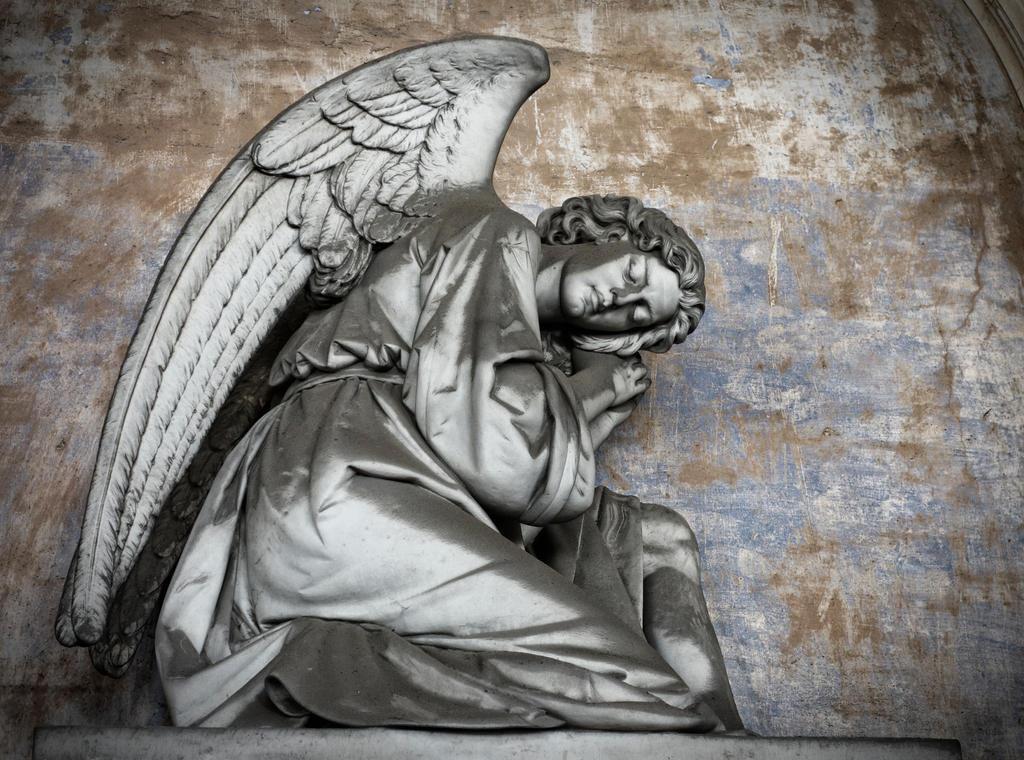 Angel VIII by rhipster