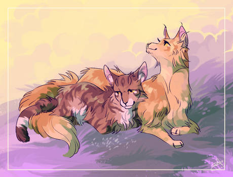 Mothwing and Leafpool