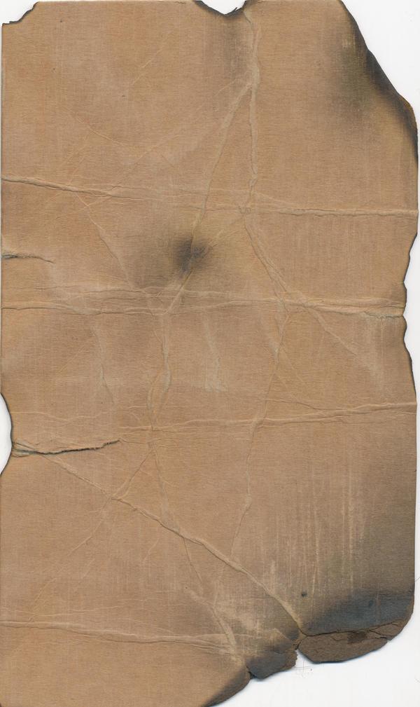 Toasty cardboard by anti-stock