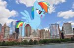Giant Rainbow Dash POV