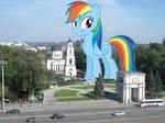 Rainbow's city stroll