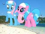 Spa Ponies at the Beach