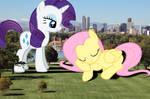 Sleepy Fluttershy's mistake