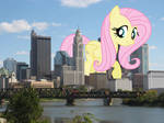 Fluttershy's tiny admirers