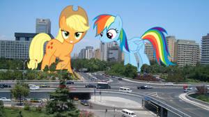 Mischievous giant ponies