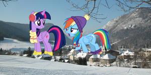 Let's build a snowpony