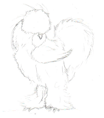 likewise 463589355370875739 moreover Tigger And The Squirrels moreover Winnie The Pooh Coloring Pages furthermore Easy Rooster Drawing. on easy to draw roo