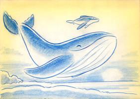 Blue whales by fabianfucci