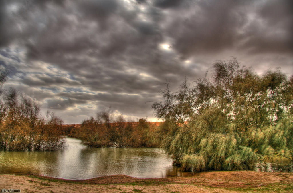 My hdr pond by NivaSimon