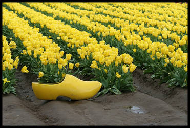 Wooden Shoe by complineBelle