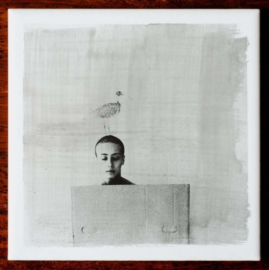 Imaginary Birds (print) by thesadstork