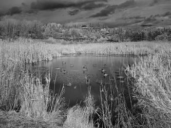 Rithets Bog IR 1 by vlad042