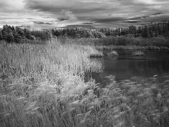 Rithets Bog IR 2 by vlad042