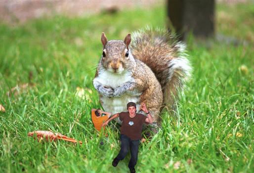 When Squirrels Go Bad