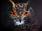 Owl, acrylic