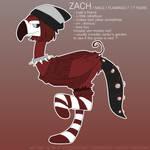 OC - Zach