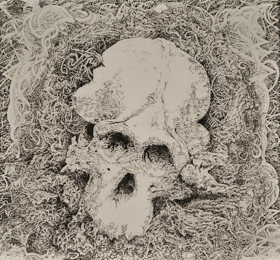 Baboon Skull by mariosvonkerpen