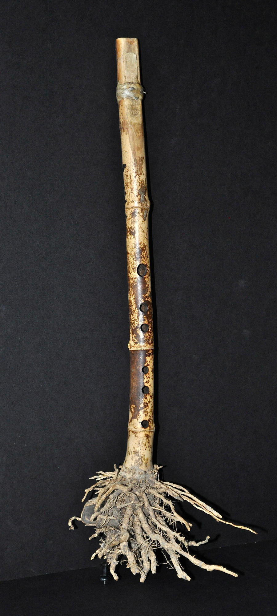 Bamboo Clarinet by MariosKerpen
