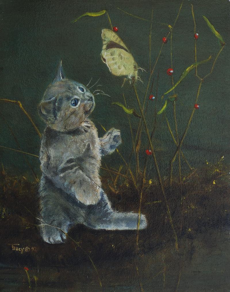 Kitten with Butterfly by hank1
